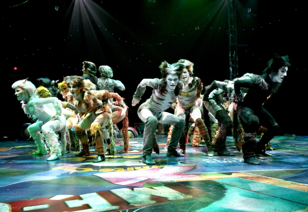 "The ensemble in a number from North Shore Music Theatre's ""Cats."" Photo: Paul Lyden"