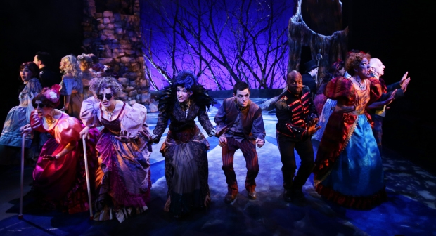 "The cast in a scene  from  the Lyric Stage's ""Into the Woods."" Photo by Mark S. Howard"