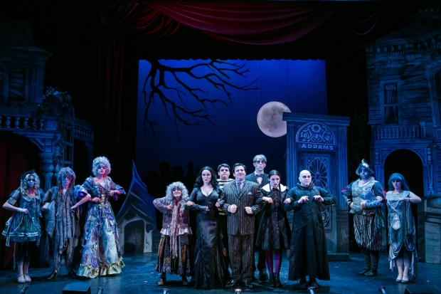 "The cast of the Stoneham Theatre production of ""The Addams Family."" Photo: Mark S. Howard"